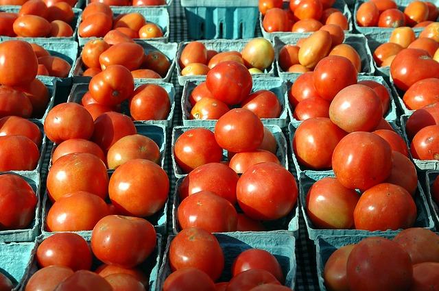tomatoes_1622911_640_640.jpg